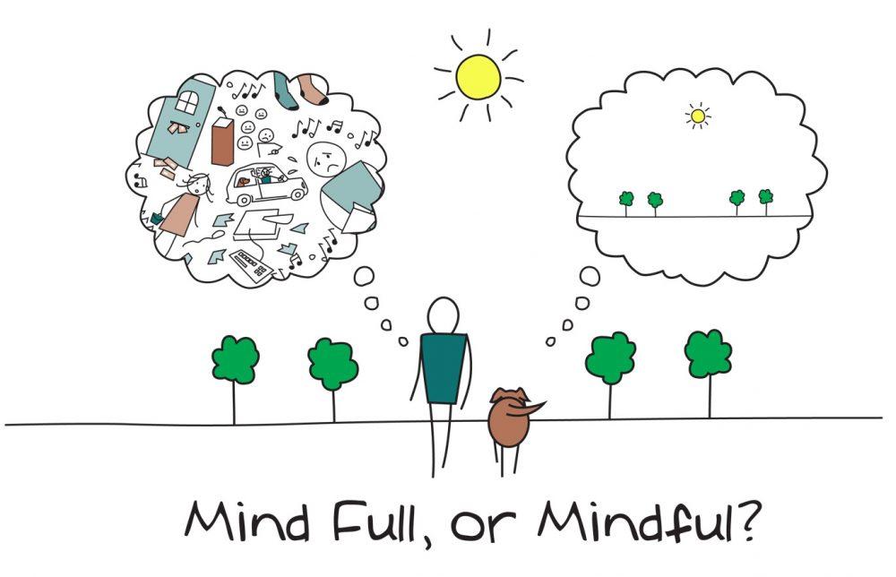 Mindfull or Mindful